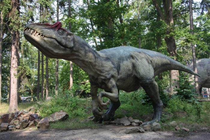 Zoo Park And Dinopark In Vy Kov Top V 253 Letn 237 C 237 Le Jižn 237